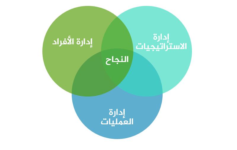 المدير التنفيذي الناجح - تحقيق أهداف المنظمة